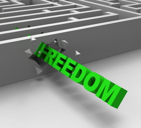 Freedom From Maze Shows Liberty Or Escape