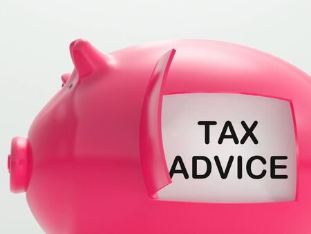 Tax Advice Piggy Bank Showing Advising About Taxes