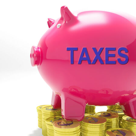 Taxes Piggy Bank Meaning Taxed Income And Tax Rate