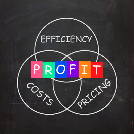 Profit Coming From Efficiency in Costs and Pricing