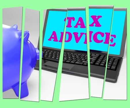 Tax Advice Piggy Bank Showing Professional Advising On  Taxation