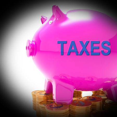 Taxes Piggy Bank Coins Meaning Taxed Income And Tax Rate