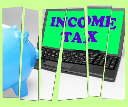 Income Tax Piggy Bank Meaning Taxation On Earnings