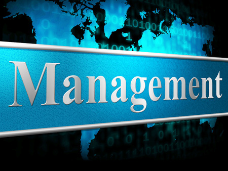 Manage Management Showing Directors Executive And Organization