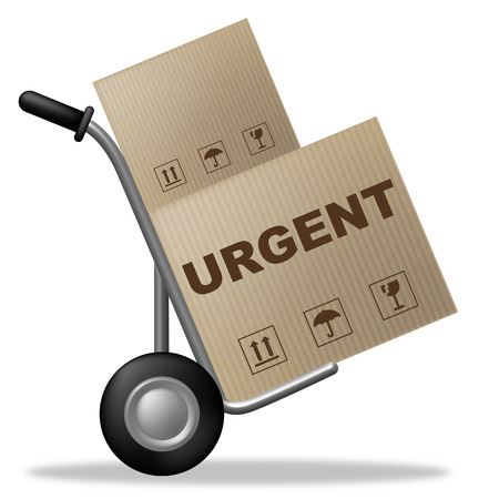 Urgent Package Meaning Shipping Box And Instant