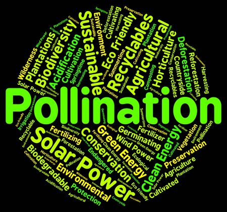 Pollination Word Indicating Breeds Text And Pollinates