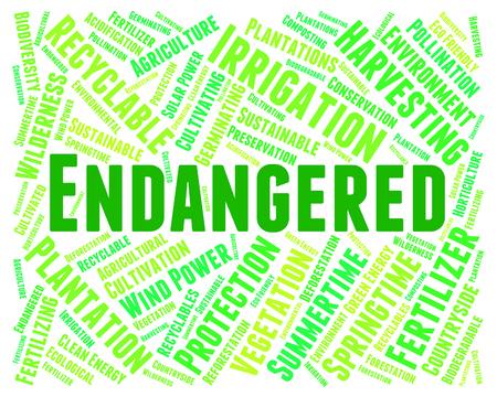 Endangered Word Meaning Facing Extinction And Endangering
