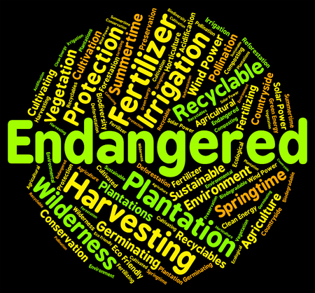 Endangered Word Indicating At Risk And Threatened