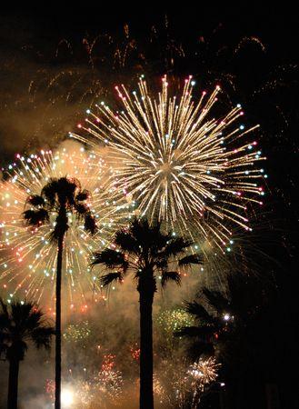 feu d'artifice au dessus des palmiers