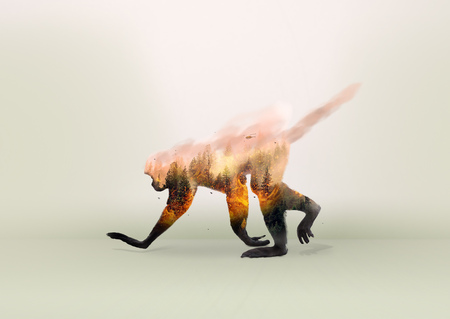 Foto de Forest fire, prohibited hunting, extinction of animals and deforestation | Crime to the environment - Imagen libre de derechos
