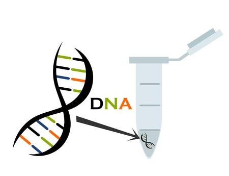DNA in test tube eppendorf. Molecular biology science. Vector illustration