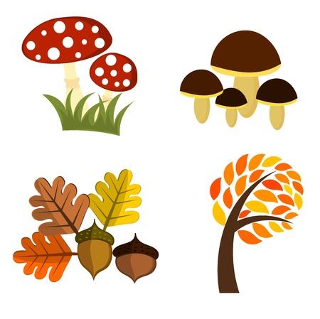 Autumn elements for design. Vector illustration