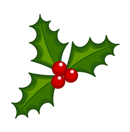 Holly berry illustration. Symbol of Christmas