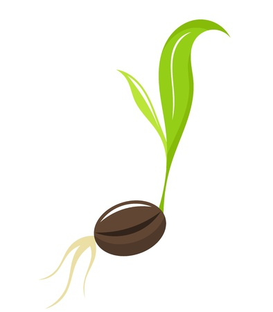 Small newborn plant - seedling. illustration