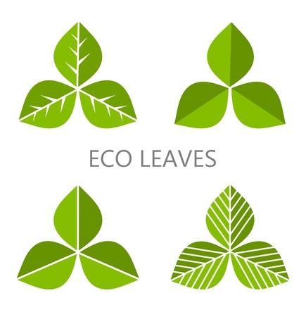 Illustration pour Set of green leaves. Vector illustration - image libre de droit