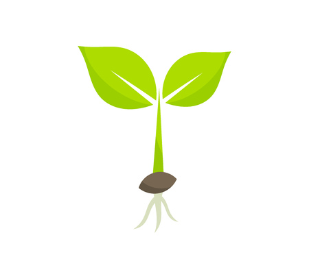 Illustration pour Little germinating plant from seed seedling icon. Vector illustration. - image libre de droit