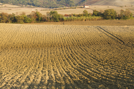 Foto per Cultivated lands - Immagine Royalty Free
