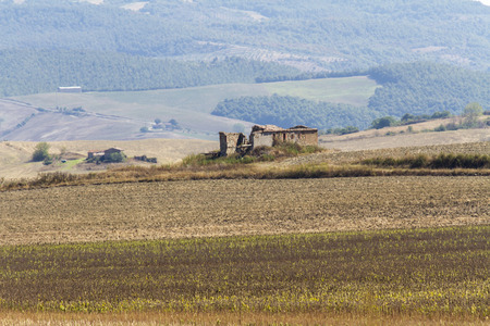 Foto per Ruin of an old farmhouse in the Tuscan countryside - Immagine Royalty Free