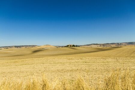 Foto per campagna toscana in provincia di siena - Immagine Royalty Free