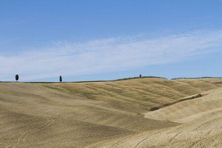 Foto per Paesaggio di campagna in Toscana - Immagine Royalty Free