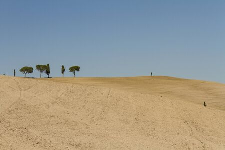 Foto per campagna toscana di fine estate - Immagine Royalty Free