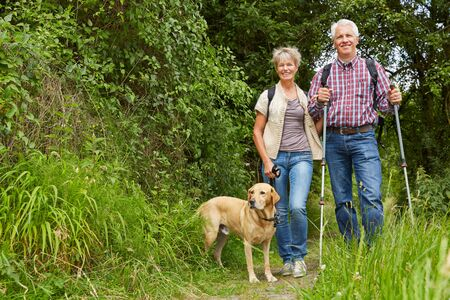 Photo pour Couple of seniors hikes with dog in summer in forest - image libre de droit