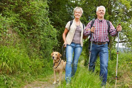 Photo for Happy couple of seniors with dog walking with dog - Royalty Free Image