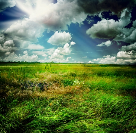 Photo for Beautiful Nature Rural Landscape - Royalty Free Image