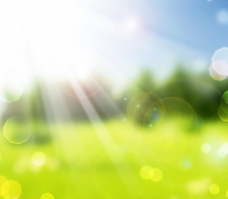 Beautiful Nature Spring Bokeh.Blurred Sunny background