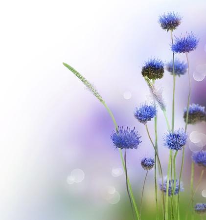 Foto für Abstract Flowers Border Design - Lizenzfreies Bild
