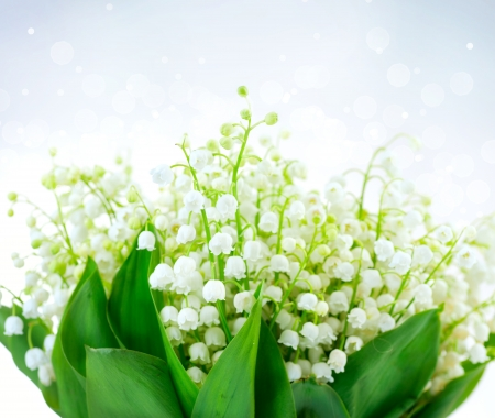 Lily-of-the-valley Flower Design  Bunch of White Spring Flowers