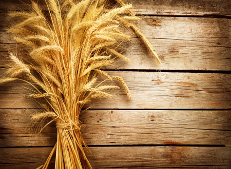 Wheat Ears on the Wooden Table  Harvest concept