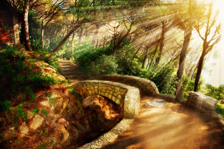 Foto de Mystical Park  Old Trees and Ancient Stone Bridge  Pathway  - Imagen libre de derechos