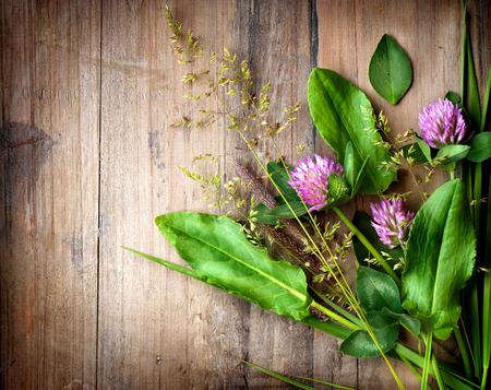 Spring Herbs over Wooden background  Herbal Medicine