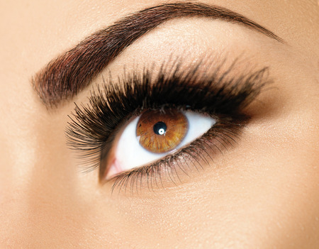 Photo pour Brown eye makeup. Perfect beauty eyebrows - image libre de droit