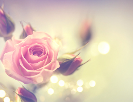 Photo pour Beautiful pink rose. Vintage styled card design - image libre de droit