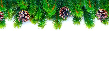 Photo pour Christmas tree with cones border background isolated on white - image libre de droit