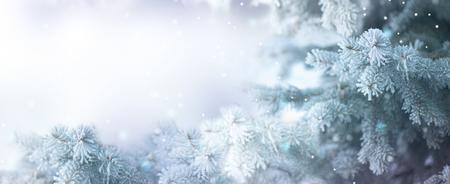 Photo pour Winter tree holiday snow background. Beautiful Christmas border art design - image libre de droit