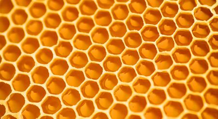 Photo pour Honeycomb. Honey comb full of fresh organic sweet honey, yellow background, cells. Healthy food concept, diet, dieting. Rotated background, backdrop. - image libre de droit