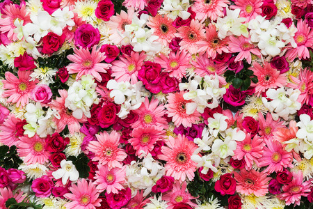 Beautiful flowers background for wedding sceneの写真素材