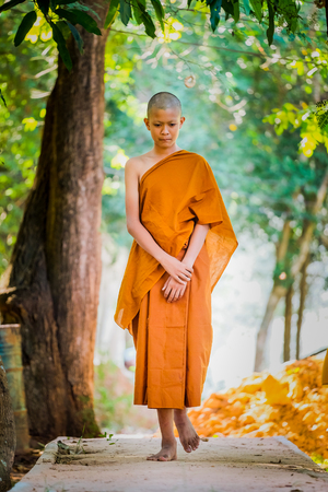 Photo for Buddhist priests practice walking, Practice setting the breath. - Royalty Free Image