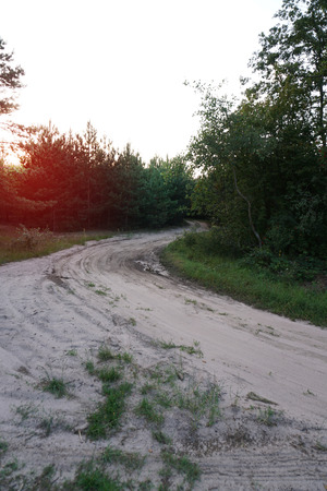 Beautiful dirt road in the forest at sunset of the day. Landscape ecology travel.