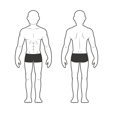 Illustration pour Athletic male body chart. Muscular man silhouette from front and back. - image libre de droit