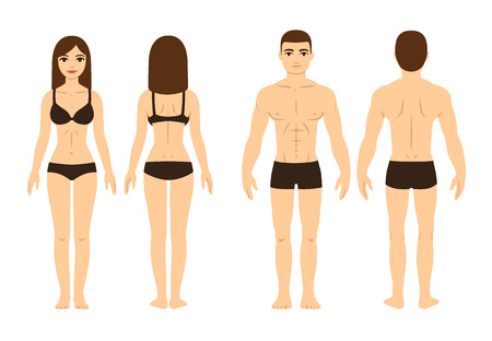 Illustration pour Male and female body, front and back. Isolated vector illustration. - image libre de droit