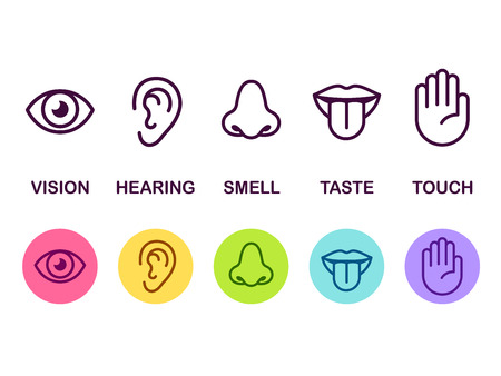 Ilustración de Icon set of five human senses: vision (eye), smell (nose), hearing (ear), touch (hand), taste (mouth with tongue). Simple line icons and color circles, vector illustration. - Imagen libre de derechos