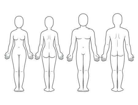 Ilustración de Male and female body front and back view. Blank human body template for medical infographic. Isolated vector illustration. - Imagen libre de derechos