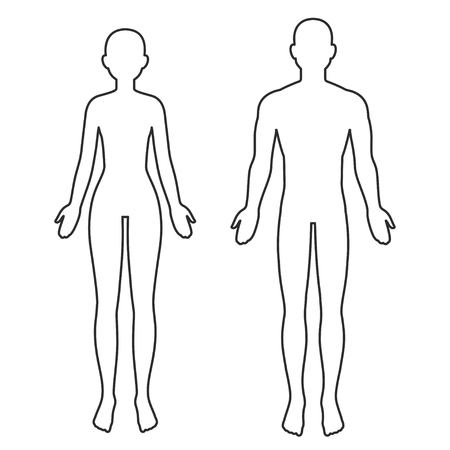 Ilustración de Male and female body silhouette outline. Blank anatomy template for medical infographics. Isolated vector clip art illustration. - Imagen libre de derechos