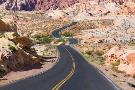Desert Winding Road