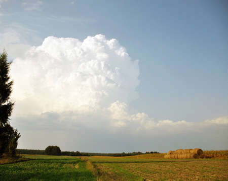 thundercloud over a field