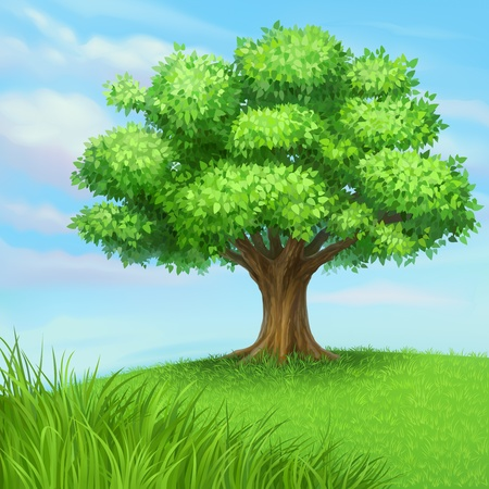 Photo for summer tree at green grass meadow - Royalty Free Image